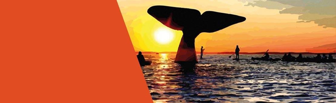 au cœur de la baleine